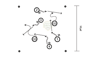 Guardians of the field - Fun soccer drill for U6